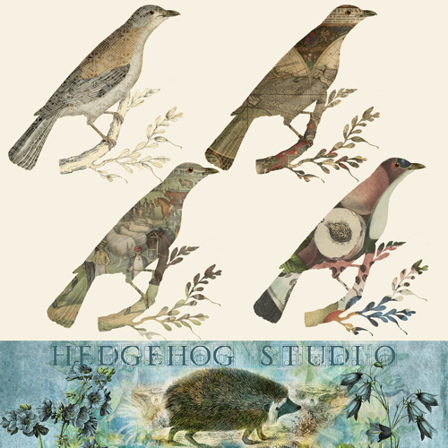 hedgehogstudio-clippingmaskbirds
