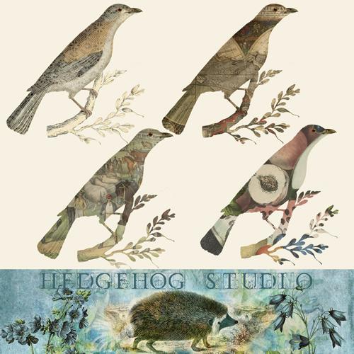 hedgehogstudio-clippingmaskbirds