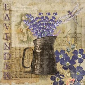 http://hedgehogstudio.com/wp-content/uploads/2016/06/lavender8x8web-300x300.jpg