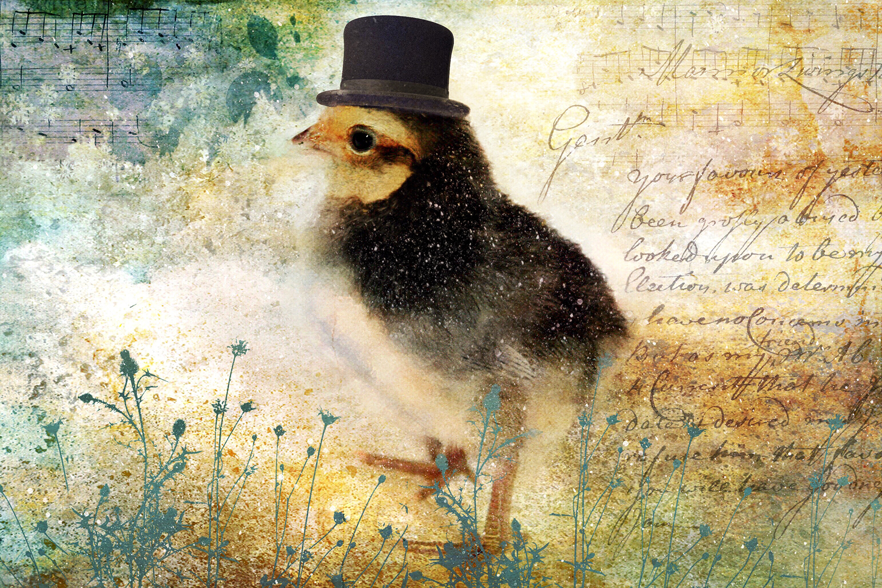 Top Hat Digital Art Collage Postcard To Print, Frame or Send – Free Download
